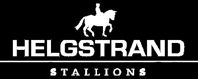 Helgstrand Stallions