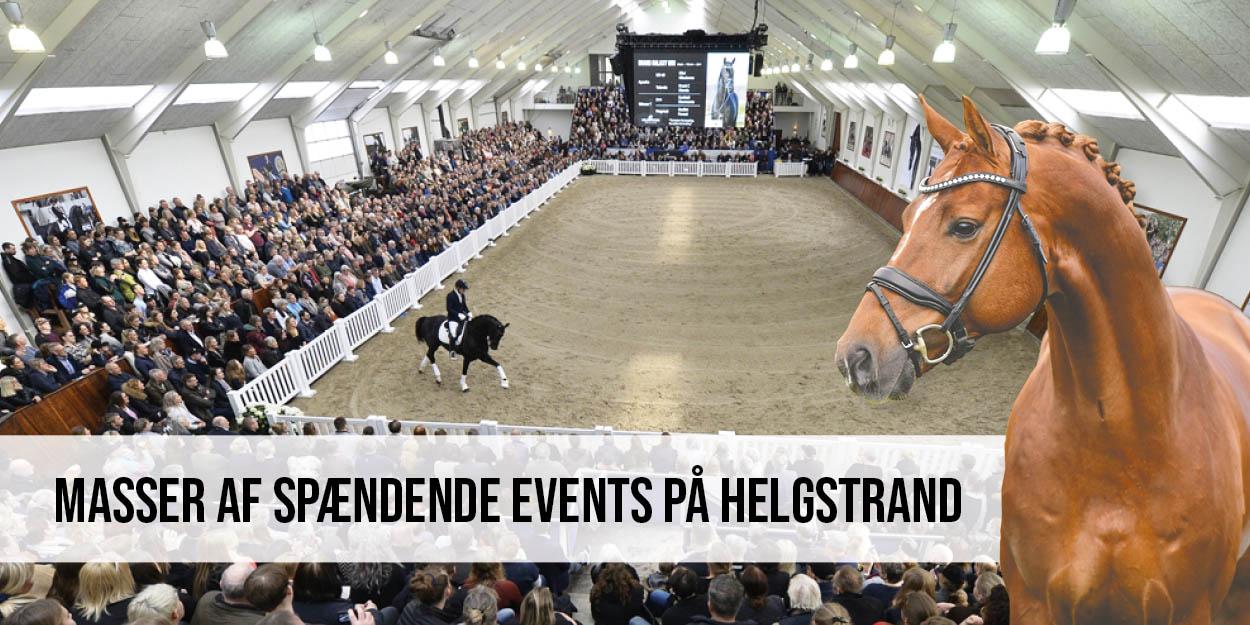 Spændende events på Helgstrand Dressage 2020